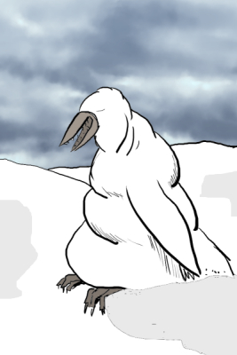 An albino penguin.